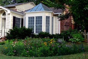 A rain garden in Arlington.