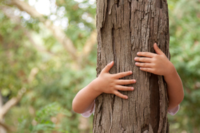 a boy hugging a tree