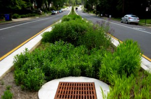 Completed Patrick Henry Drive Median Green Street Project.