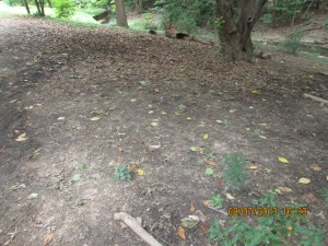 """""""Before"""" image of slope that was terraced with staked tree limbs and planted with natives through the StormwaterWise Landscapes Program."""