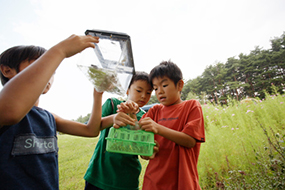 boys holding a plastic box with insects