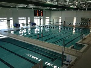 Do You Love Swimming Why Not Volunteer With Our Adapted Aquatics Learn To Swim Program Parks