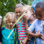 kids looking at a jar of grass from a nature area