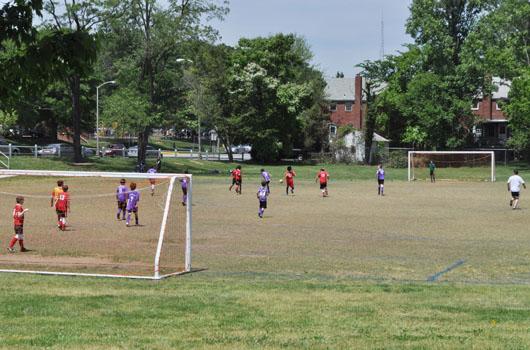 fields park arlington county soccer field