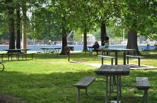 quincy_park_arlington_county_basketball_picnic_tables