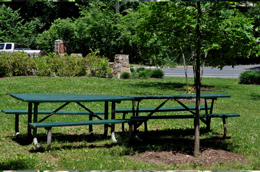 zachary taylor park arlington county benches
