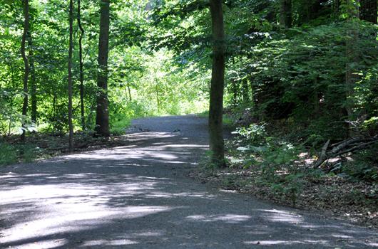zachary taylor park arlington county path trail
