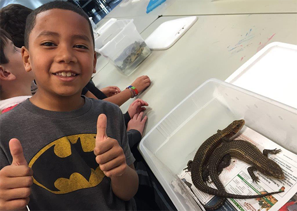 child posing next to lizards