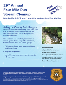 stream clean up flyer