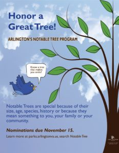 Honor a Great Tree! Nominations due Nov. 15