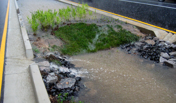 Patrick Henry green street during a rain storm.