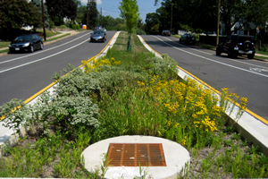 Completed Patrick Henry Green Street project.