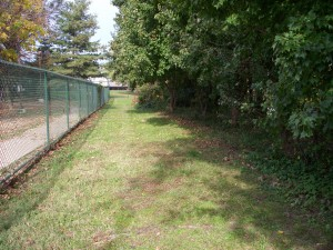 The trail will be next to the dog park within Towers Park