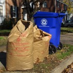 Biodegradable paper bags of leaves sitting on curb for recycling.