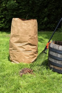 Freshly raked backyard, with rake, leaves and recycling yard waste paper bag
